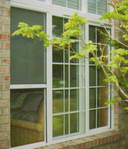 windowscreen
